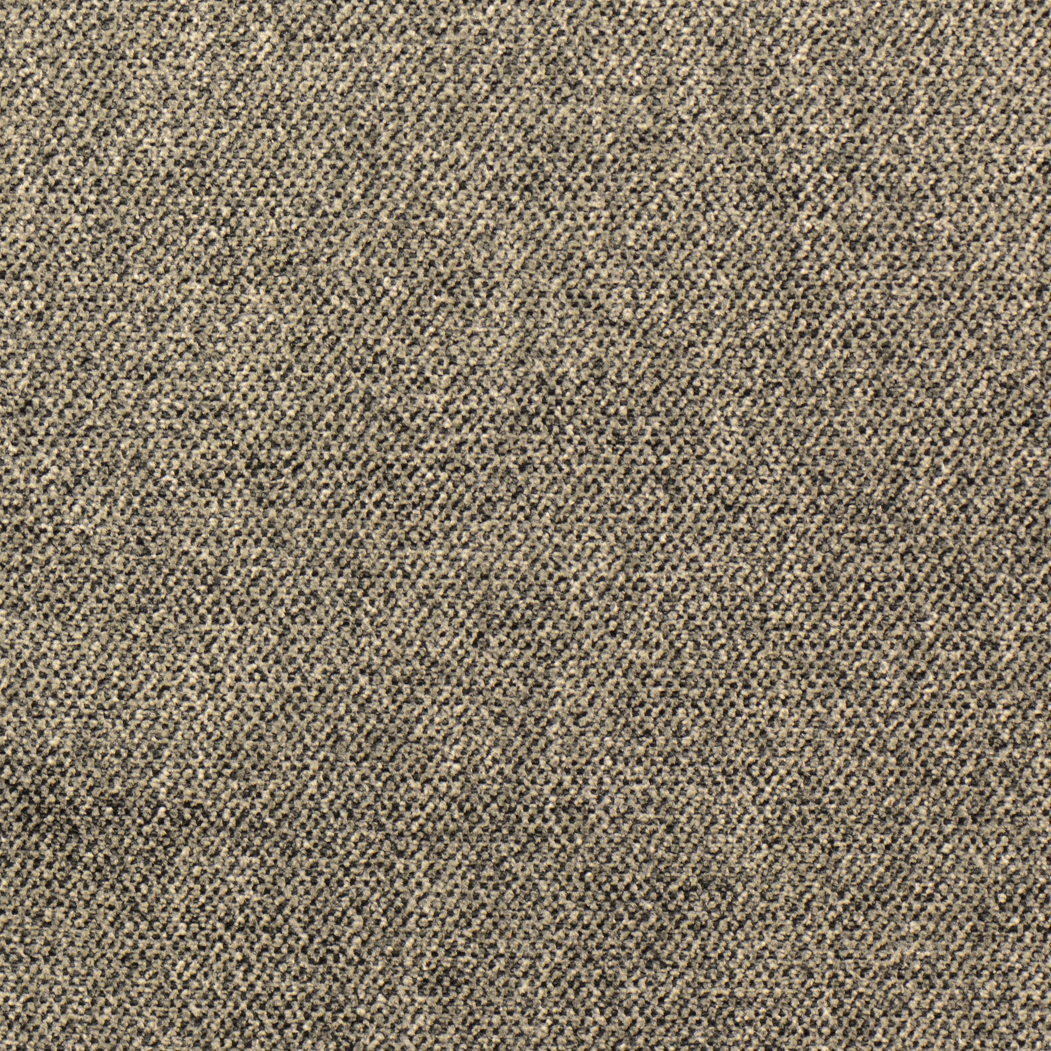 Titanum grey 006